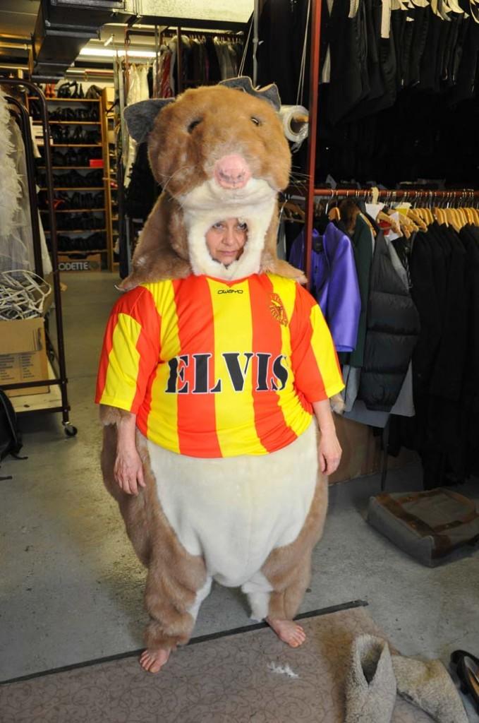 Damit Maskottchen Elvis nicht mehr so traurig schaut, suchen wir einen Anfeuerungsruf für 1. FC Elverlingen!