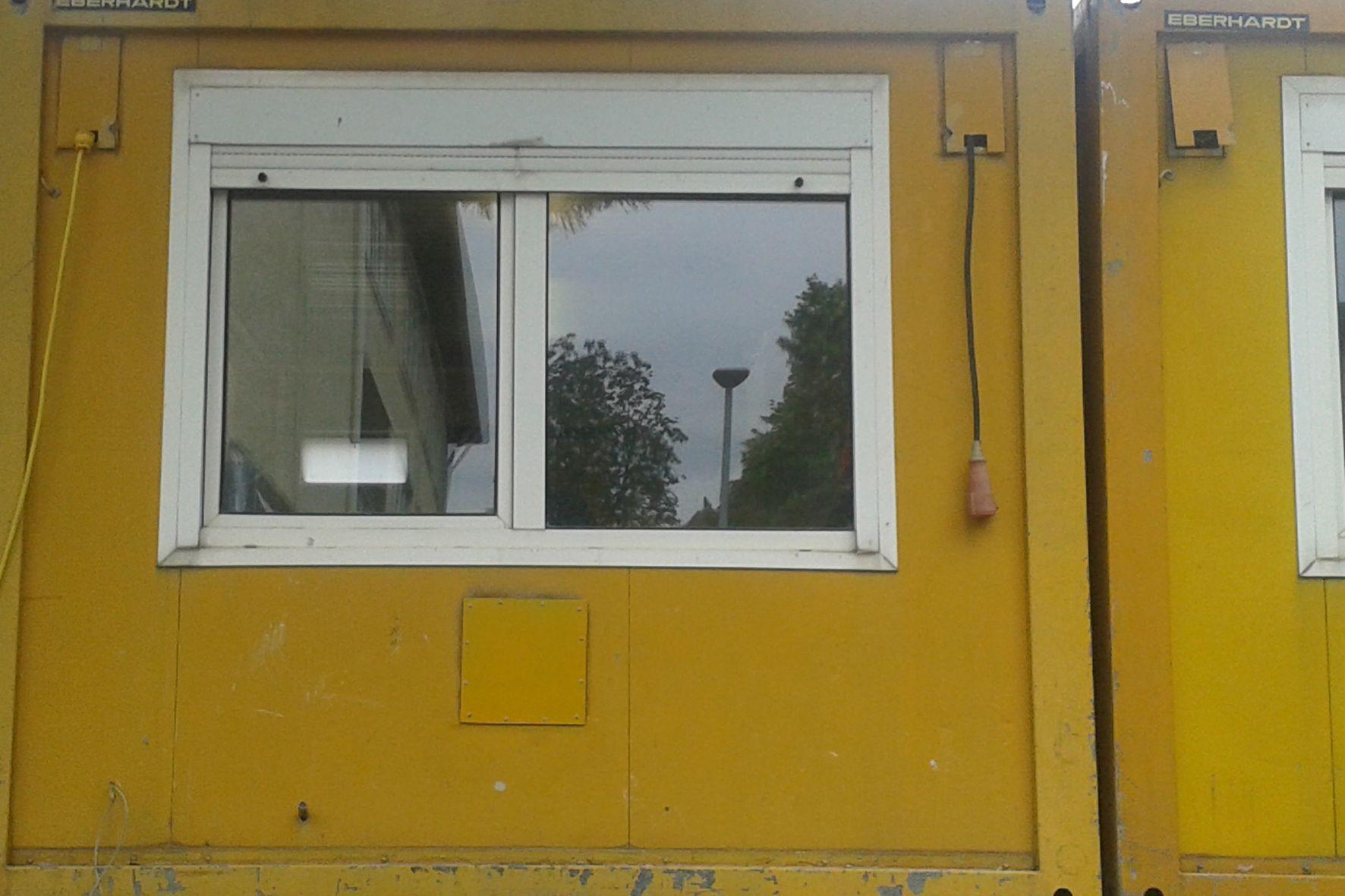 Gelb wohin man schaut! (1)