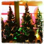 Weihnachten1+